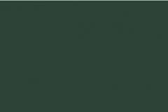 Classic Hawthorn Green 272-33709 Gloss