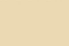 Primrose 272-84365 Gloss